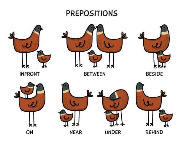 preposition penjelasan beserta contohnya